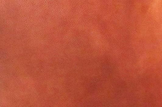 Ledermuster Polo Vintage von Cuerdesign